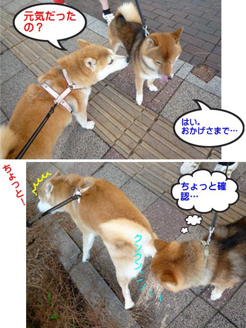 10日ブログ5.jpg
