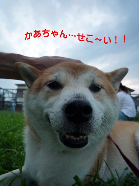 11日ブログ14.jpg
