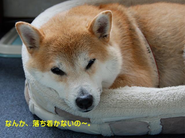 11日ブログ17.jpg