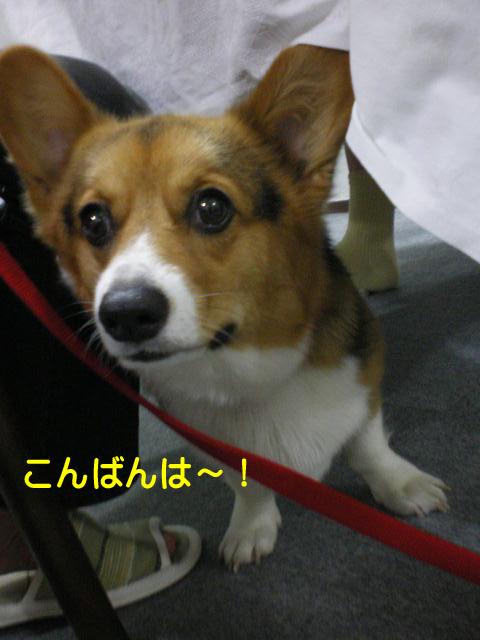 12日ブログ12.jpg