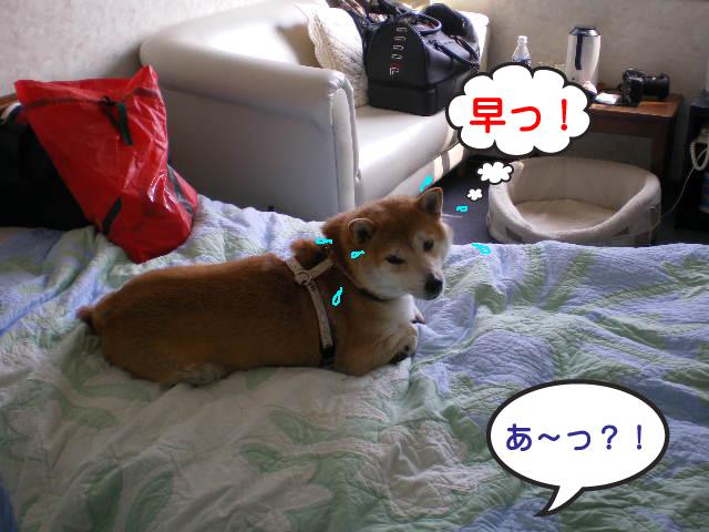 12日ブログ20.jpg
