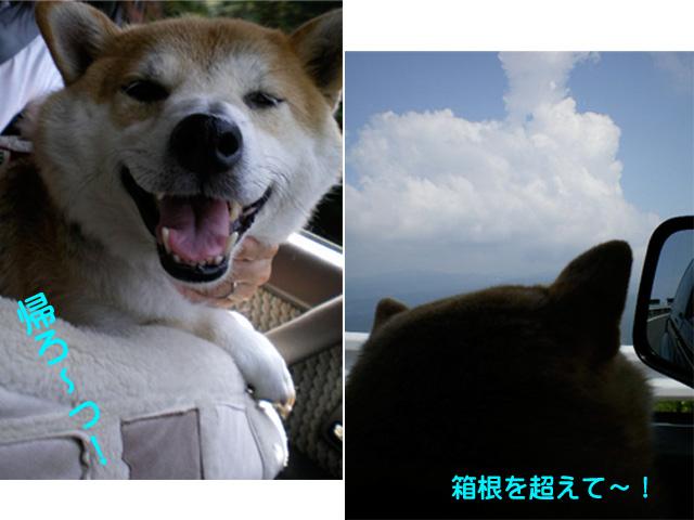 12日ブログ21.jpg