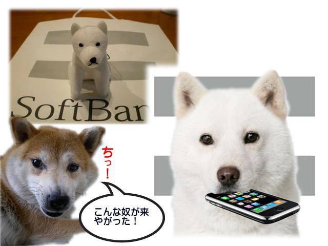13日ブログ3.jpg