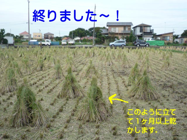 13日ブログ9.jpg