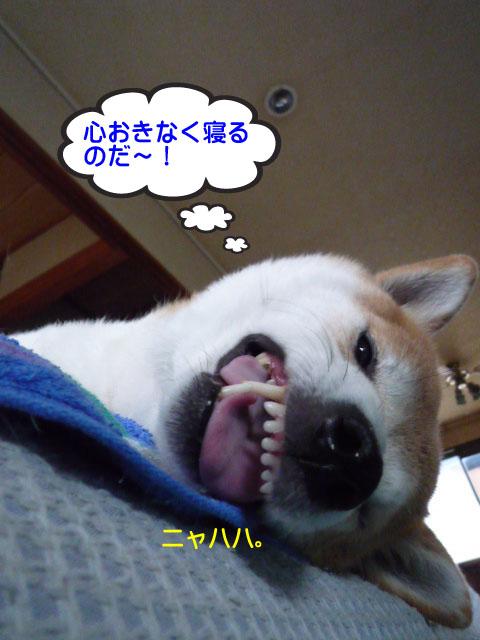 14日ブログ12.jpg