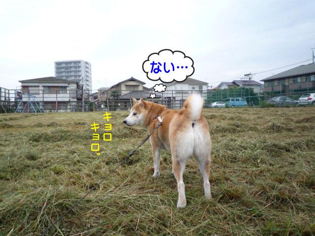 14日ブログ3.jpg