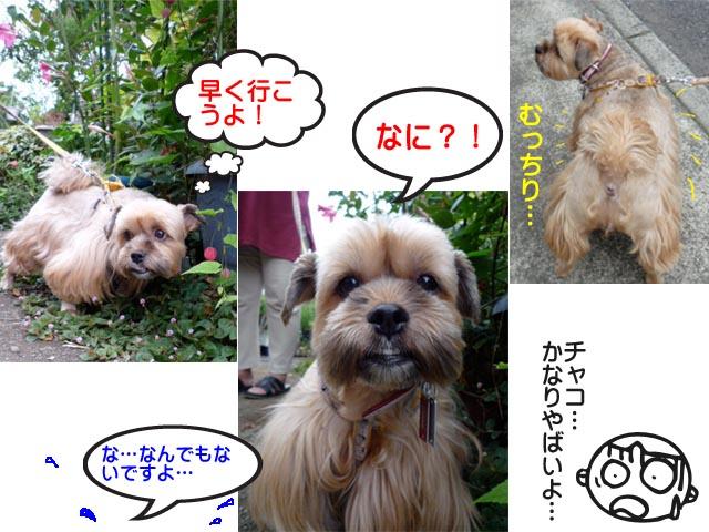 14日ブログ7.jpg