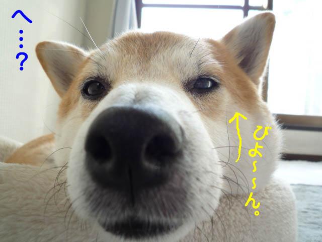 15日ブログ11.jpg