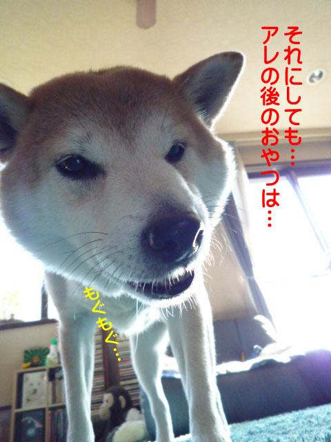 17日ブログ1.jpg