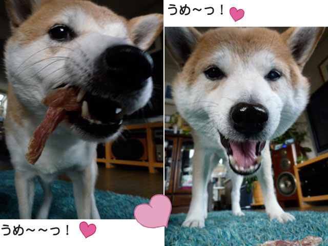 17日ブログ10.jpg