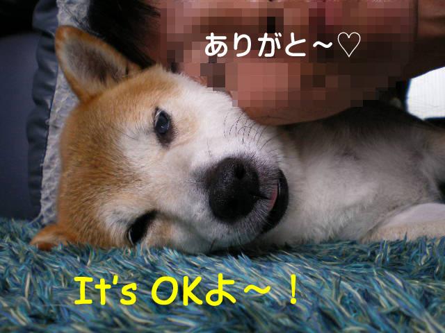 17日ブログ11.jpg