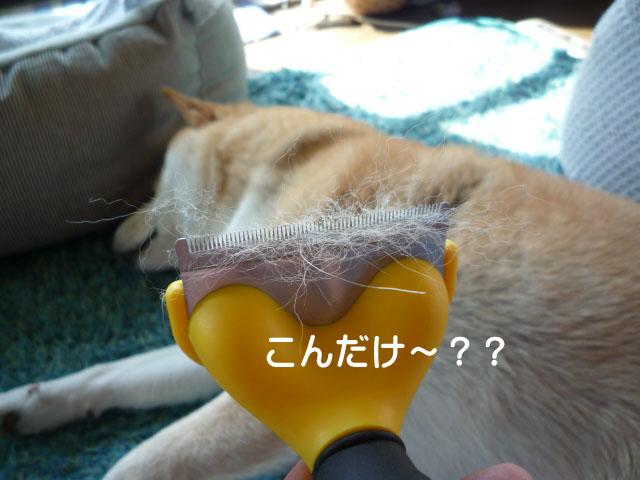 17日ブログ5.jpg