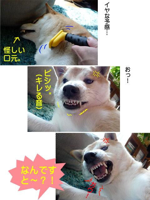 17日ブログ6.jpg