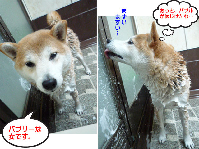 17日ブログ9.jpg