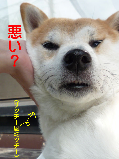 19日ブログ12.jpg