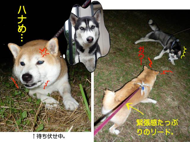 19日ブログ8.jpg