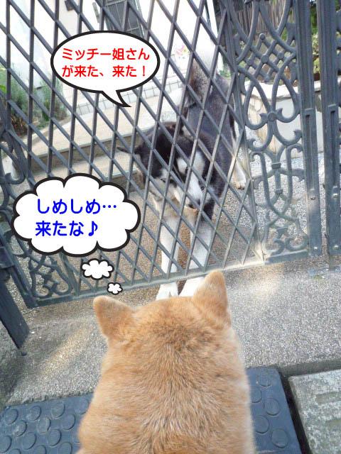 19日ブログ9.jpg