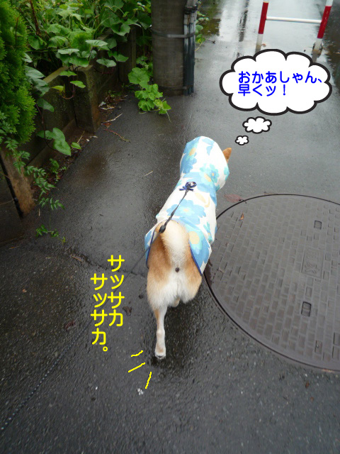 22日ブログ2.jpg