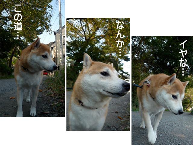 22日ブログ3.jpg