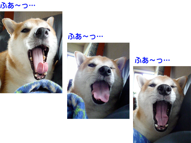 22日ブログ5.jpg