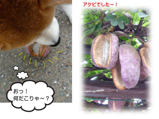 23日ブログ2.jpg