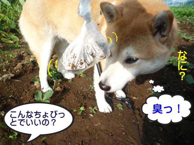 23日ブログ9.jpg