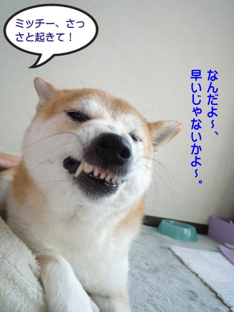 24日ブログ1.jpg