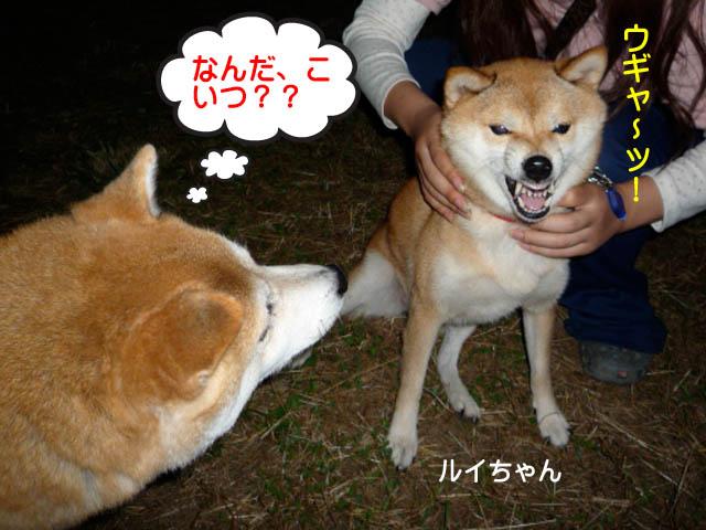 24日ブログ10.jpg