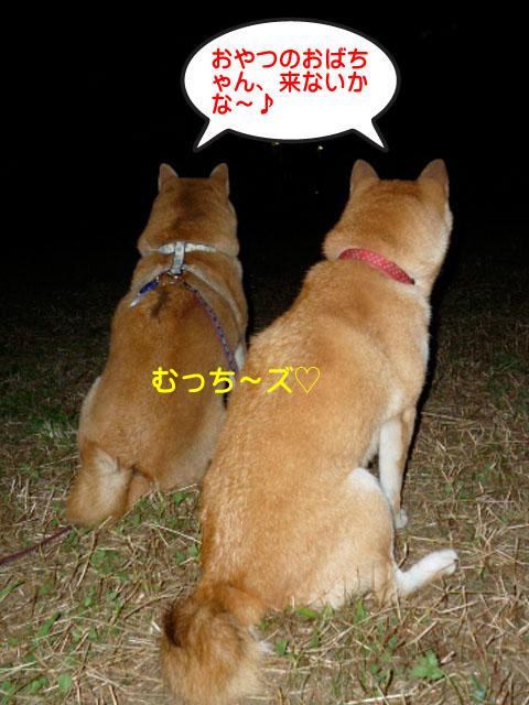 24日ブログ14.jpg