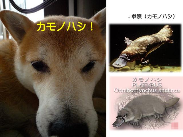 25日ブログ1.jpg