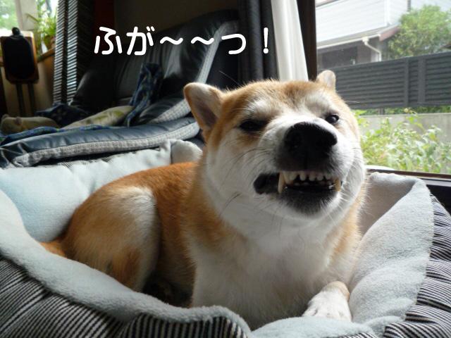 26日ブログ1.jpg