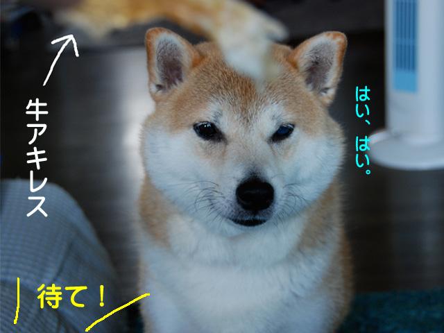 26日ブログ3.jpg
