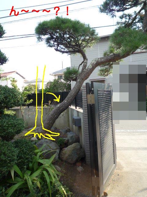 27日ブログ11.jpg