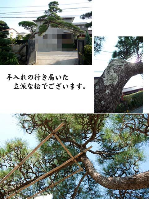 27日ブログ9.jpg