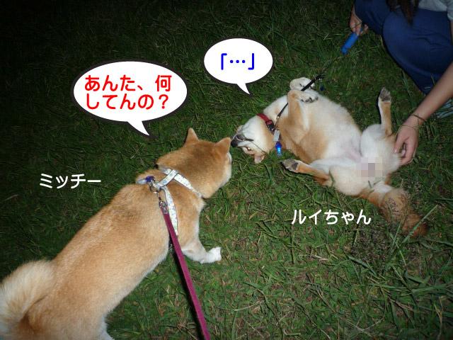 28日ブログ10.jpg
