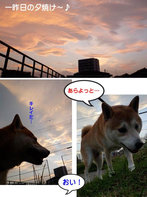 28日ブログ3.jpg