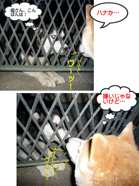 28日ブログ4.jpg