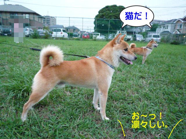 28日ブログ9.jpg