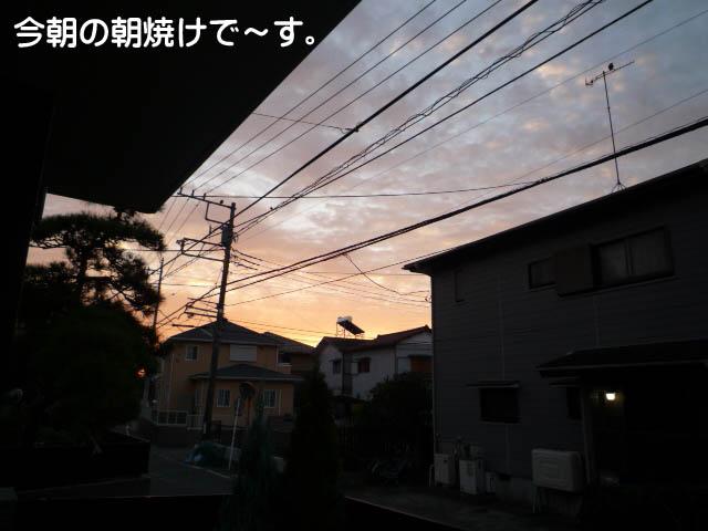29日ブログ2.jpg