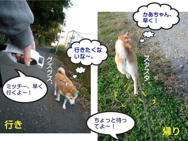 29日ブログ4.jpg