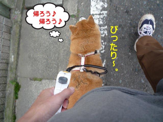 29日ブログ6.jpg