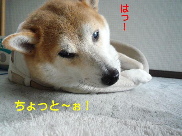 2日ブログ1.jpg
