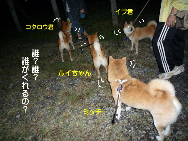 2日ブログ11.jpg