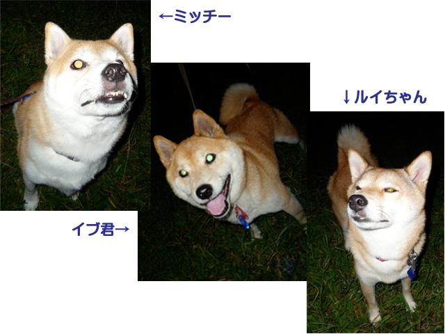 2日ブログ10.jpg