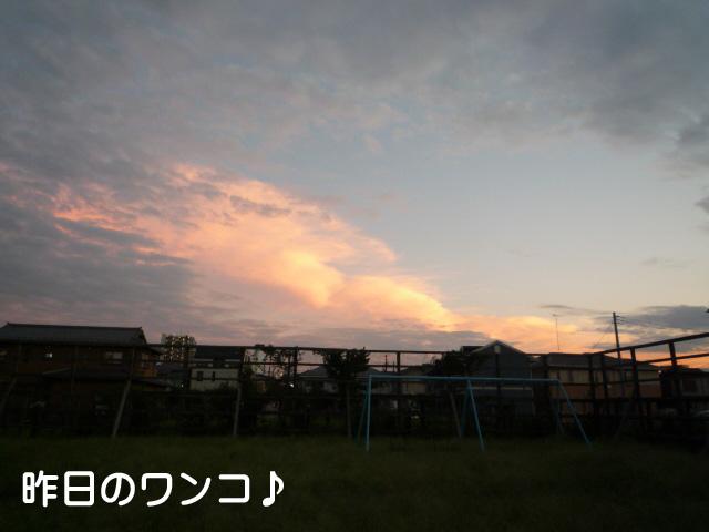 2日ブログ7.jpg
