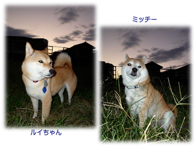 2日ブログ8.jpg