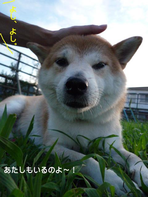30日ブログ14.jpg