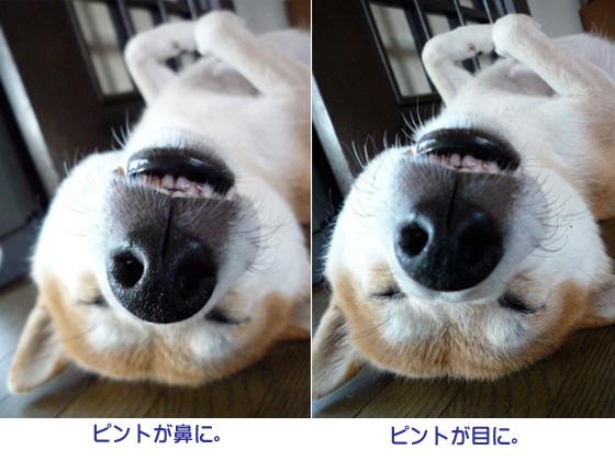 31日ブログ15.jpg