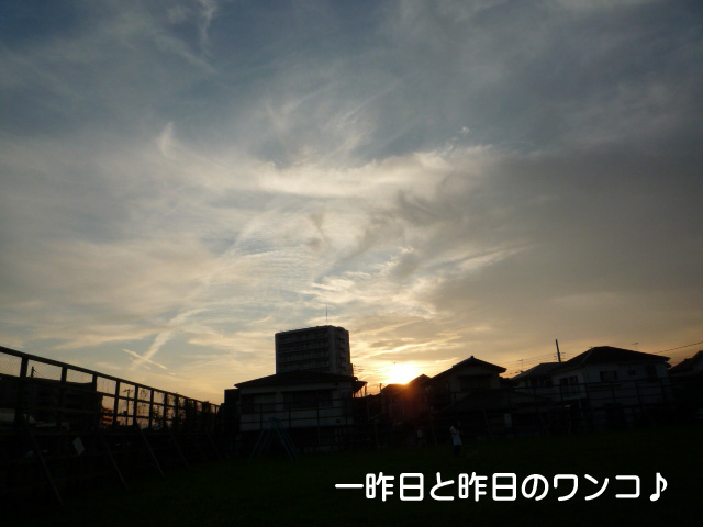 3日ブログ2.jpg