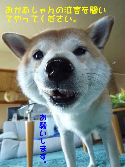 4日ブログ1.jpg